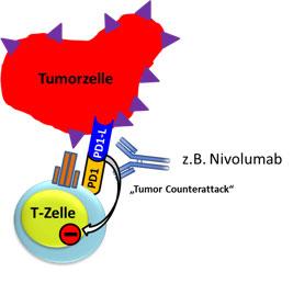 Tumor counterattack